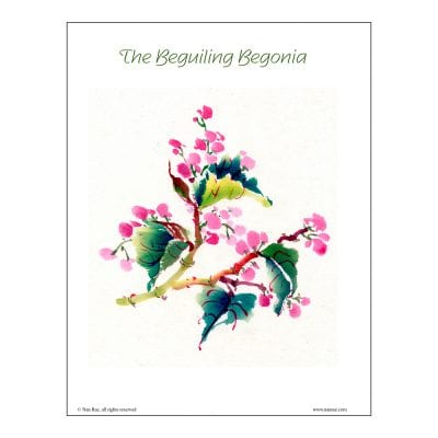 Begonia Brush Painting Lesson by Nan Rae