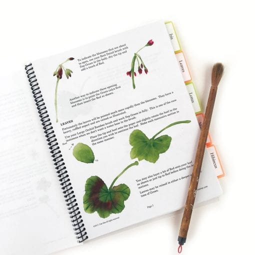 Inside Floral Notebook III by Nan Rae