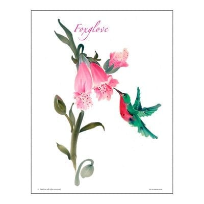 Foxglove Brush Painting Class Lesson by Nan Rae