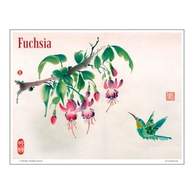 Fuchsia and Hummingbird Brush Painting Class Lesson by Nan Rae