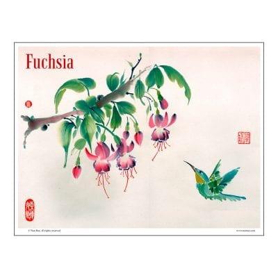 Fuchsia and Hummingbird Brush Painting Class Lesson by Nan Rae