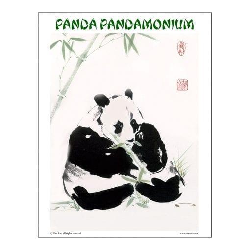 Panda Class Lesson by Nan Rae