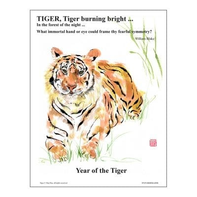 Tiger Class Lesson by Nan Rae