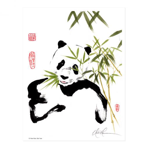 L1511 Bai Yun Print © Nan Rae