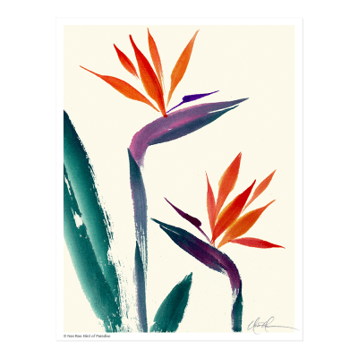 L1807 Bird of Paradise Print © Nan Rae