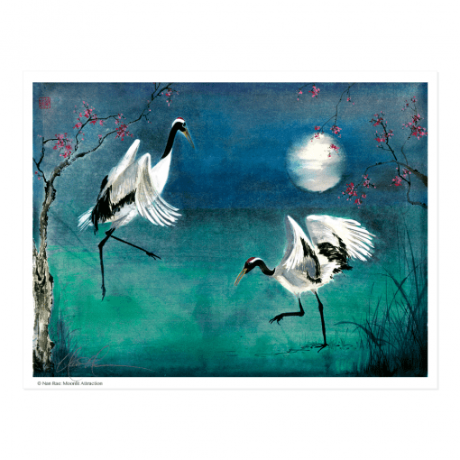 L2243 Moonlit Attraction Print © Nan Rae