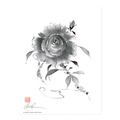 L2416 Studies in Ink: Rose II Print © Nan Rae