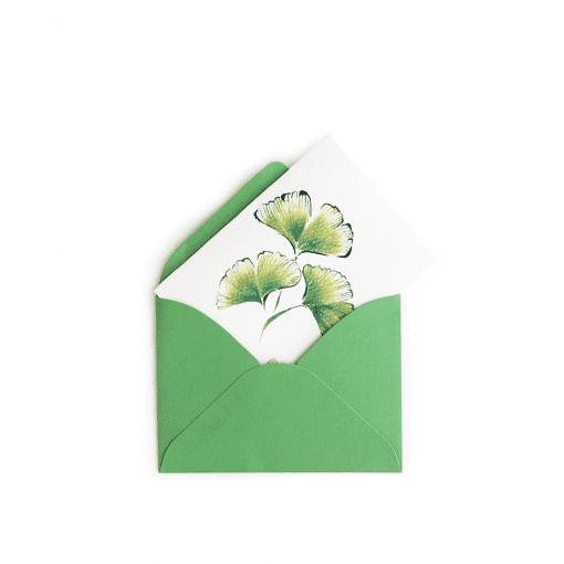 Ginkgo Gift Enclosure © Nan Rae