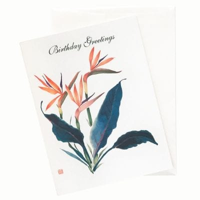 20-22B Tradewinds Birthday Card by Nan Rae