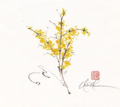 An original Forsythia painting by Nan Rae