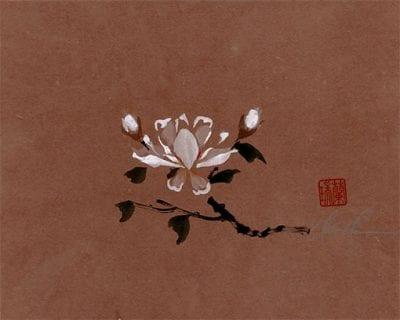 An Original White Magnolia painting by Nan Rae