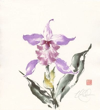 Cattleya painting by Nan Rae
