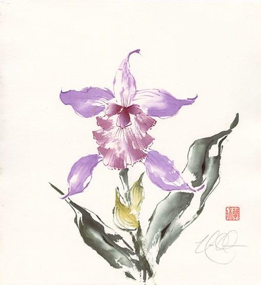 Cattleya painting by Nan Rae