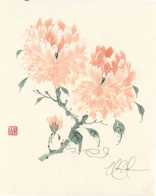 Peony Brush painting by Nan Rae