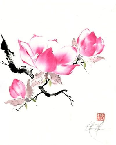 Chinese Magnolia painting by Nan Rae