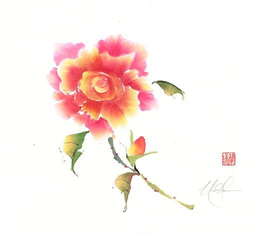 Rose painting by Nan Rae